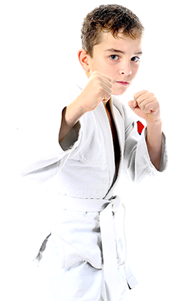Young Martial Arts